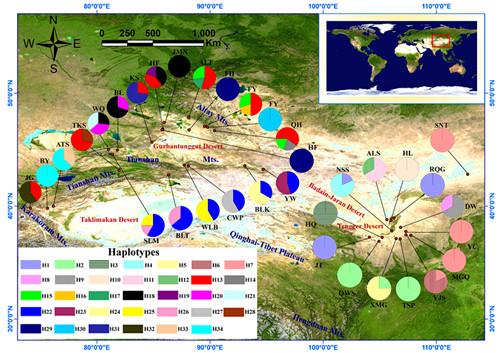 新疆生地所荒漠植物兔唇花属植物谱系分化研究取得进展(图)图片