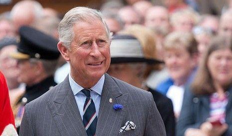 英国查尔斯王子被确诊