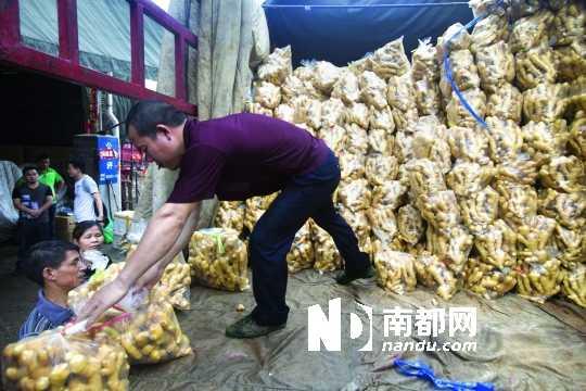 昨日下午,在江南果菜批发市场的干果一区,工人们正在卸载生姜。