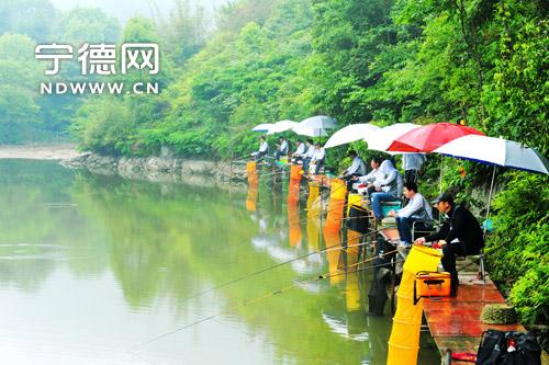福鼎桐山溪成为钓鱼爱好者的好去处