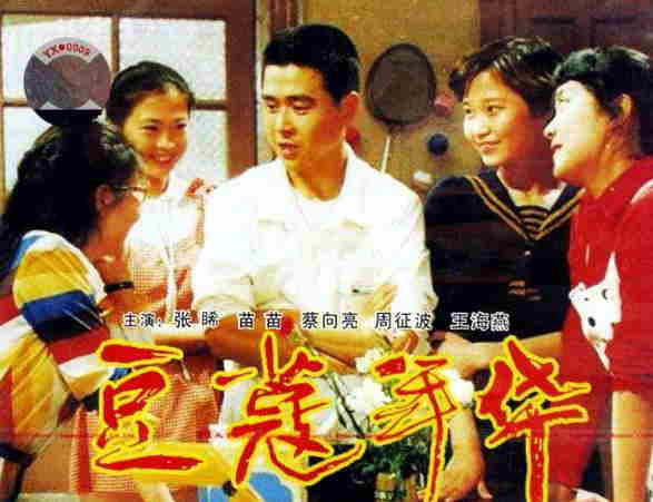 许亚军第二任妻子张��主演的《豆蔻年华》海报