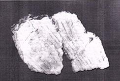 图5仙人洞遗址早期条纹陶