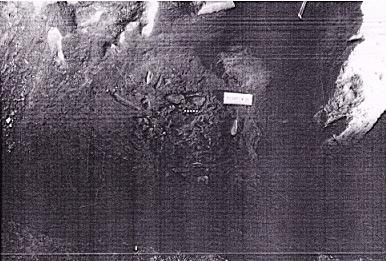 图6玉蟾岩95DMT93E陶片出土情况