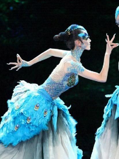 2013年05月20日04:00 我来说两句       众所周知,杨丽萍的孔雀舞堪称