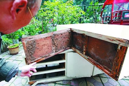 黄大爷打开木柜的外壳