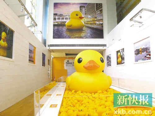 """大黄鸭事件是什么_对话""""大黄鸭""""之父:鸭子突然变鸭蛋,沮丧吗?(图)-搜狐滚动"""