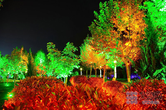 生活资讯_组图:环保节能灯扮靓永城市民夜生活