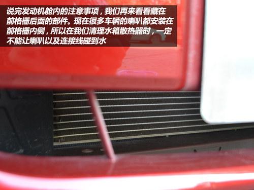车主DIY系列之 自己动手清理柳絮/飞虫