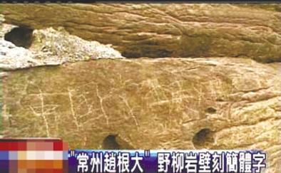 """""""常州赵根大"""" 2009年3月27日,台湾北海岸野柳地质公园岩壁上被刻下""""中国常州赵根大""""字样。台湾媒体将此事报道后,赵根大公开道歉。"""