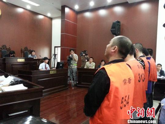 31日,常州市钟楼法院对常州警方抓获的出卖人体器官案的团伙8人进行了公开审理。 唐娟 摄