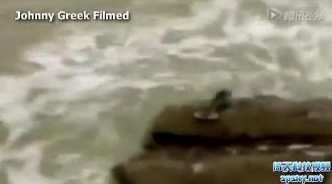 以色列美人鱼图片活的图片
