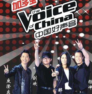 《中国好声音》海报。