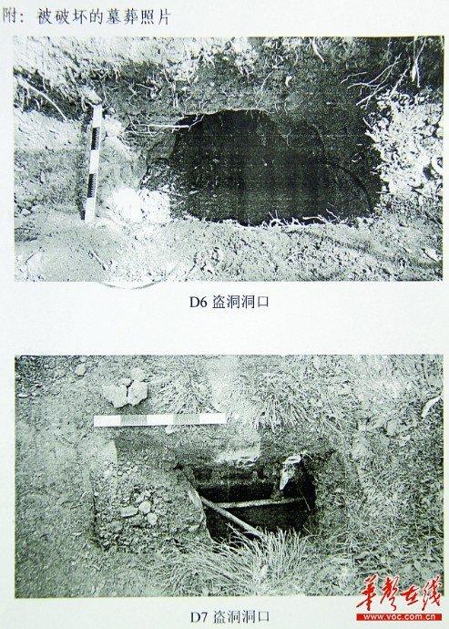 被破坏的墓葬照片。(黄珀供图)