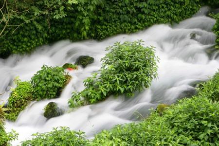 让观众惊叹的清澈小河黑鱼河