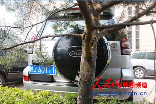 [转载]延安城管局长被指拥豪华公车 级别超省长部长(图) - 秋芳 - 秋芳的博客