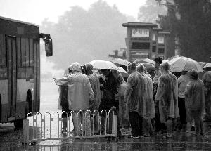 昨天,一场大雨突如其来,市民穿着雨衣、打着雨伞在公交车站等待上车。 晨报记者 柴春霞/摄