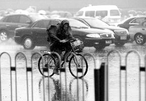 一位市民骑着自行车在风雨中艰难前行。晨报记者 柴春霞/摄