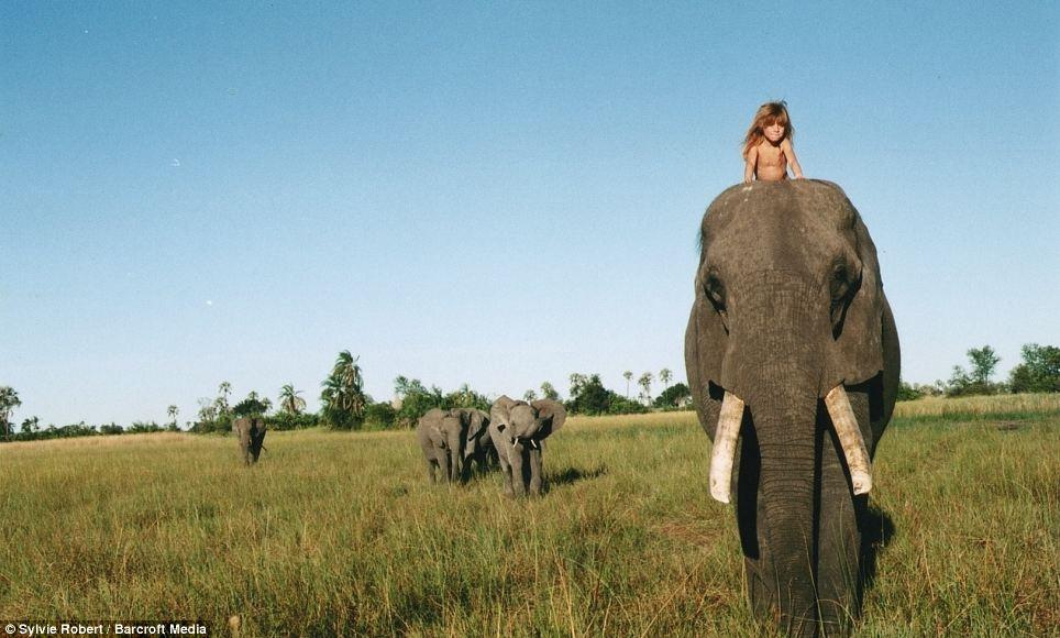 蒂皮10岁时回到巴黎生活,随后出版了《我的野生动物朋友》一书,书