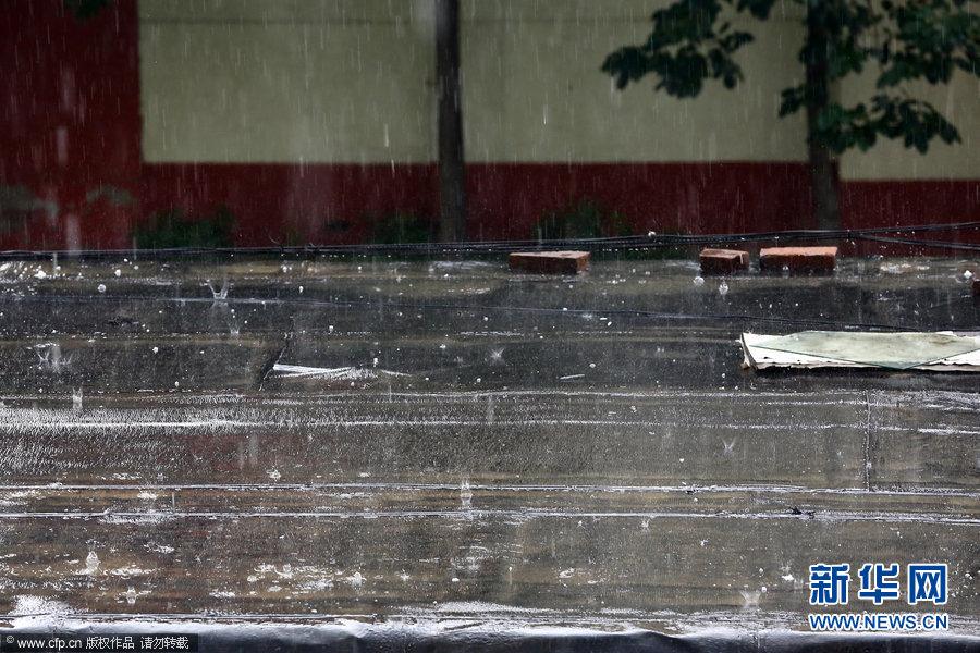2013年06月11日,北京,海淀区增光路房顶上的冰雹粒。当日,北京海淀区增光路地区突然短时间降下黄豆粒大小的冰雹。