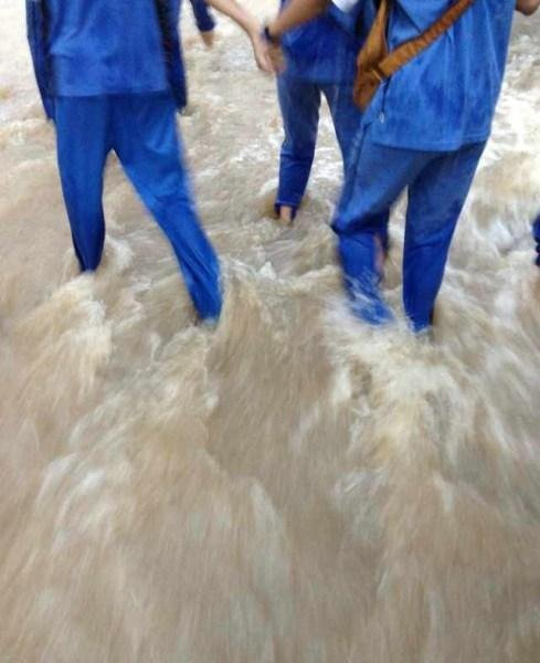 广东珠海遭特大暴雨袭击 鱼被冲进楼内(图)
