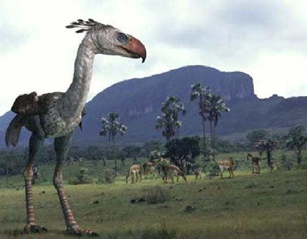比恐龙更怪异13种史前动物 海果类动物 科学探索