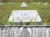 朴槿惠提出送还360具中国军人遗骸