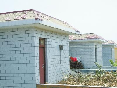 绝大多数村民家房屋顶的琉璃瓦都有脱落现象
