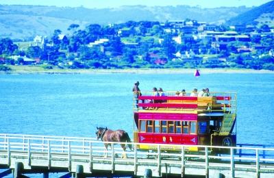 在南澳搭乘马拉车游览。