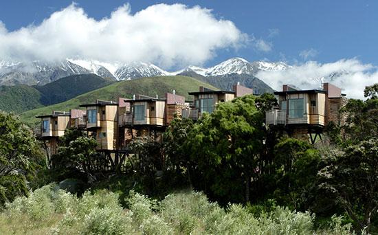 哈普库树顶屋酒店 (Hapuku Lodge)(新西兰凯库拉)