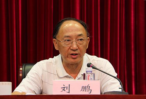 刘鹏局长在会议上讲话。