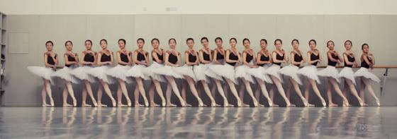 北京舞蹈学院进修班_北京舞蹈学院芭蕾毕业班唯美毕业照(组图)-搜狐滚动