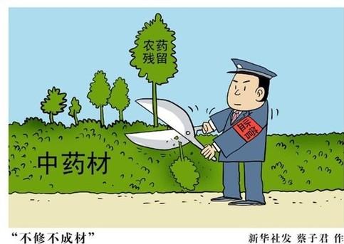 在中国出口的中药材中,大部分是原料药,成药不到4%.