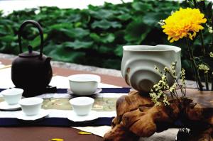 江南梅雨季半是天水半是茶