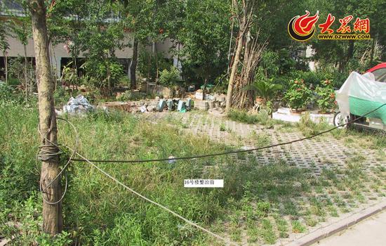 济南七里河小区内新增260个车位(组图)图片