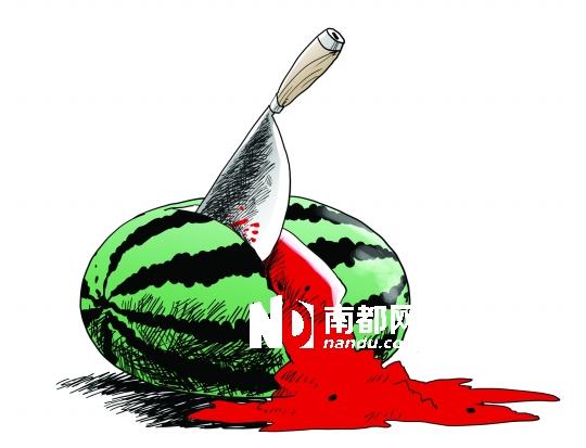 临武县长:尚无证据证明瓜农被秤砣砸死
