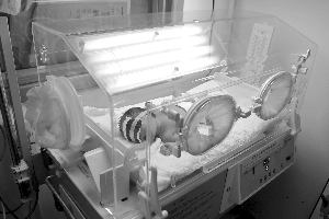 位于南京市红十字医院产房里的婴儿保温箱 现代快报记者 顾炜 摄