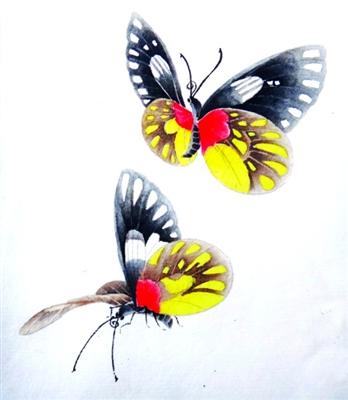 工笔《蝴蝶》的设色方法(组图)