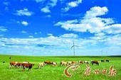 盛夏游玩的天堂 四大草原寻清凉