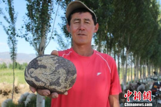 """图为四师七十八团三连承包户波拉提努尔正在展示自己捡到的""""龙""""石。刘建 摄"""