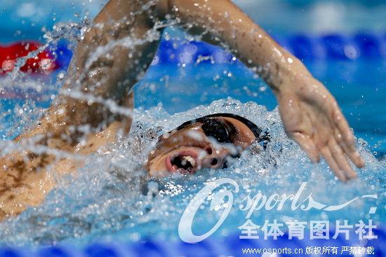 游泳世锦赛第11日游泳赛况 孙杨领衔众好手出战