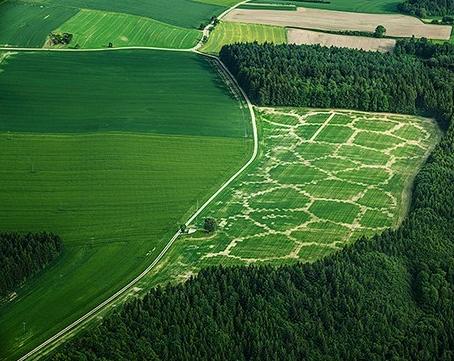 生态农场_人类农业活动的第三次革命—生态农业的必然之路(组图