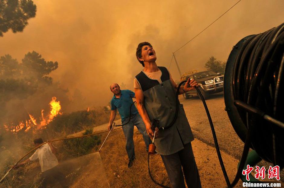 当地时间2013年8月11日,葡萄牙多地发生森林火灾,大量消防员参与灭火.图片