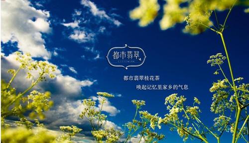 桂花茶:城里的月光把家乡的梦照亮