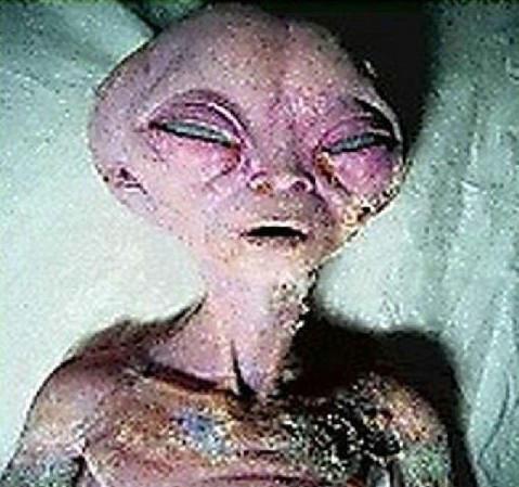资料图:网络流传的外星人尸体头部特写。