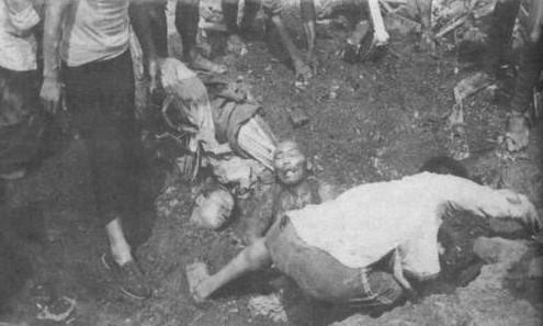 dianyeng731_揭秘日军731部队的罪行照片(图)
