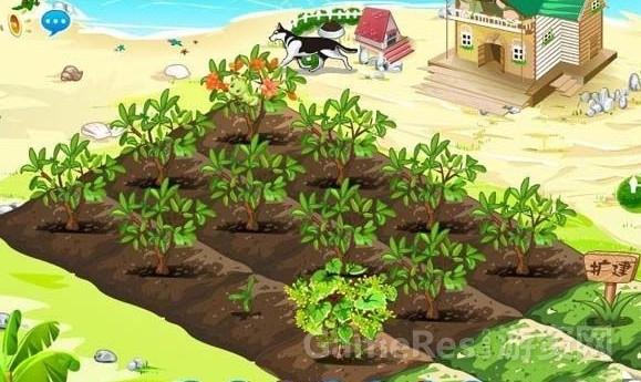 人人网关闭开心农场 偷菜终成回忆-搜狐游戏