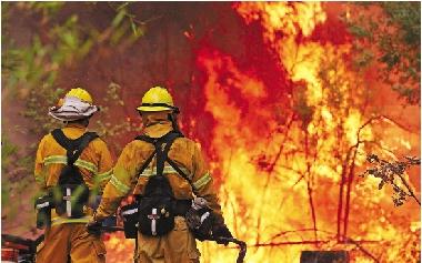 8月21日,两名消防员站在被大火吞噬的森林前.图片