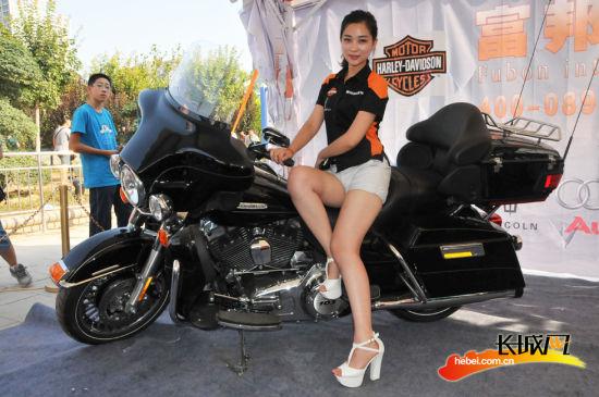 石家庄北交会哈雷摩托美女模特秀激情上演图 搜狐 550
