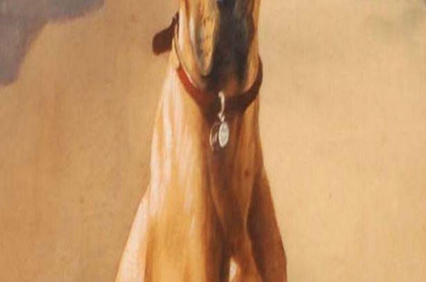 """一只""""二战""""英雄狗狗的勋章及画像在拍卖行中以1100英镑约合人民币1万元"""