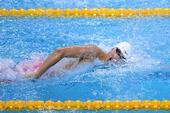 图文:男子4X100米混合泳接力 余贺新在比赛中